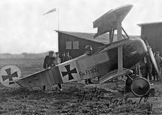 Werner Voss and his Fokker F.I 10317.