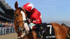 Jamie Moore loves this horse Sire de Grugy