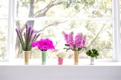 An assortment of coloured and pastel flowers in a variety of vases on a windowsill.