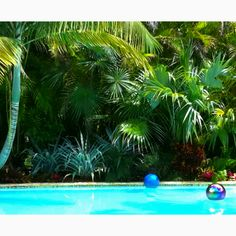 197 best above ground pool spa ideas images in 2016 for Best pool designs 2016