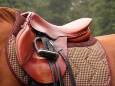 Saddles have been used for centuries to make horse ride easier and comfortable. The earliest use of saddle dates back to 700 BC by the Assyrian cavalry. http://onlinecatalogs.tradeindia.com/c1830/leather-saddles.html