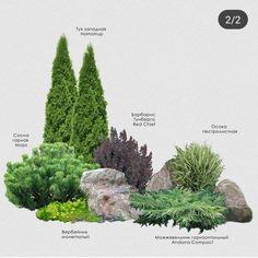 Front Yard Garden Design, Rock Garden Design, Garden Design Plans, Front Yard Landscaping, Lawn And Garden, Small Garden Landscape, Landscape Plans, Landscape Design, Plantation
