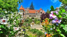 Bory Var castle Székesfehérvár