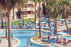 when you see it - protur bonaire hotel Bad Hotel, When You See It, Majorca, Palm Trees, Safety, Places, Photos, Palm Plants, Security Guard