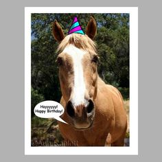 Horse saying happy birthday 102 best images about horse birthday horse saying happy birthday 102 best images about horse birthday quotes on pinterest terry and beeps pinterest horse birthday happy birthday and bookmarktalkfo Image collections