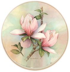 Tulip Magnolia Floral Coaster Set of 8    Floral Counter Art absorbent stone coasters are crafted from a natural stoneware material that absorbs moisture and condensation to protect furniture. A durable cork backing give further tabletop protection from water marks and scratches. Made in the U.S.A.    $29.94    http://www.jmcutlery.com/store/prod_magnolia.htm
