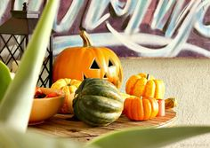 Keep your holiday decor simple by using the fresh elements of Fall: gourds, squash, pinecones and pumpkins.