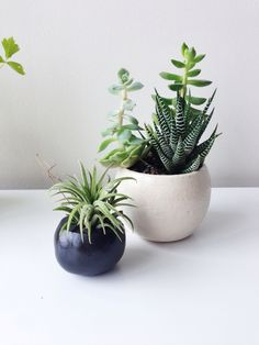 3 Black Plant Balls with drainage Set for small by seasonsforyou, $31.00