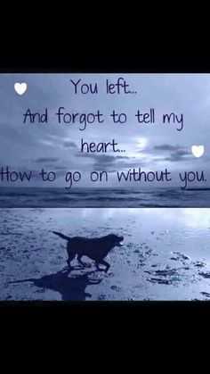 My heart will be forever broken.. :'(