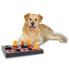 Trixie Pet Products – Activity Chess Dog Toy