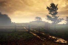 Misty mornin at the farm