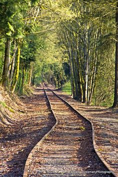 Vanishing Point, train tracks outside of Portland, Oregon. Abandoned Train, Abandoned Places, By Train, Train Tracks, Oh The Places You'll Go, Places To Visit, Vanishing Point, Old Trains, All Nature