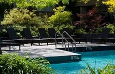 Hilton Montreal Bonaventure - Montreal, Quebec, Canada. The site of the pool 'pup catch' Olympics.