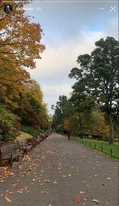 Autumn Cozy, Fall Winter, Autumn Aesthetic, We Fall In Love, Falling In Love, Best Seasons, Pics Art, Photo Dump, Plein Air