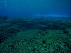 "Underwater Ruins, Yonaguni Island, Japan-""Submerged stone structures lying just below the waters off Yonaguni Jima are actually the ruins of a Japanese Atlantis—an ancient city sunk by an earthquake about 2,000 years ago.    That's the belief of Masaaki Kimura, a marine geologist at the University of the Ryukyus in Japan who has been diving at the site to measure and map its formations for more than 15 years."""