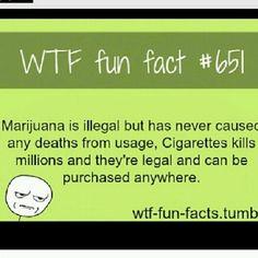 Wtf fun fact •_•
