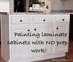 EASY TUTORIAL ON HOW TO PAINT CHEAP LAMINATE CABINETS WITH NO PREP WORK