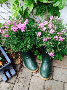 Recycling of the old garden boots :)