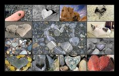 Hearts In Nature by I Flickr 4 JOY, via Flickr