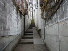 atelier 5 siedlung halen - footpath
