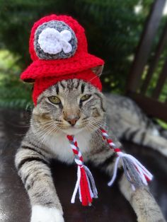 Cat Hat Cat Costume - Cats and Small Dogs - The Kitty Cat's Fire Hat - Cat Clothes Cat Clothing Cat Apparel  Ask a Question $20.00 USD