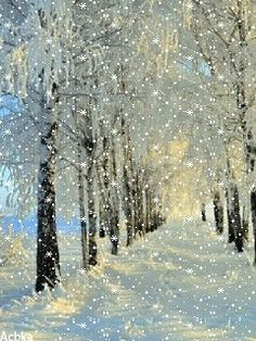 ideas for nature winter wonderland snow scenes Christmas Scenes, Christmas Art, Winter Christmas, Xmas, Winter Szenen, Winter Magic, Winter Pictures, Christmas Pictures, Gif Noel