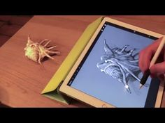 Apple Pencil drawing #2 demo on iPad Pro and artist's review