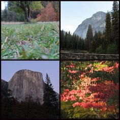 One of our teen travel bloggers explores the Spirit of Yosemite- which still shines through, despite recent wildfires. See more: http://www.wanderingeducators.com/best/traveling/spirit-yosemite.html