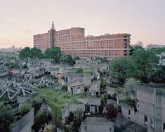 콘크리트로 지은 파리의 유토피아에는 노인들이 산다(화보)