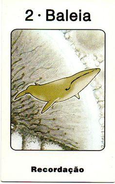 Baleia - Yin - Recordação