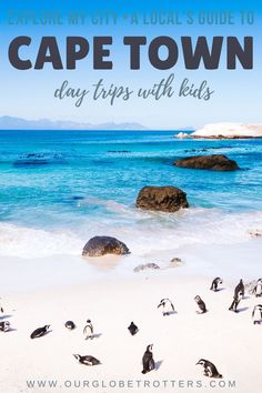 Extend your trip to Cape Town with one of these incredible getaway ideas. From easy day trips to weekenders, a local's guide to the best family-friendly day trips based on your kid's ages and driving distancees from Cape Town | Plan your trip to Cape Town, South Africa |  Explore My City - adventurous family travel with kids | OurGlobetrotters.com Best Family Vacation Destinations, Family Getaways, Weekend Getaways, Travel With Kids, Family Travel, Family Weekend, Easy Day, Plan Your Trip, Cape Town