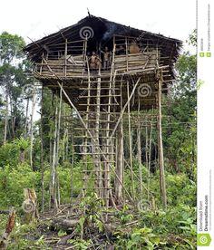 irian jaya indonesia People   INDONESIA, NEW GUINEA, IRIAN JAYA, ONNI VILLAGE - JUNE 27: Local ...