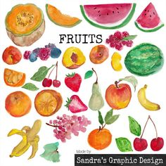 "Clipart: ""FRUITS""  hand painted watercolor fruit images"