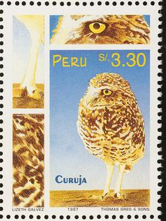 Bare-legged Owl stamps - mainly images - gallery format