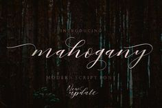 Mahogany Script by Area Type Studio on @creativemarket