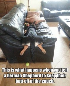 I mean, technically...the butt is off the couch.