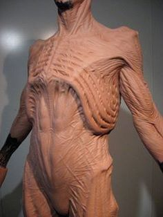 The Future is Here: Printed Prosthetics Anatomy Reference, Pose Reference, Drawing Reference, Anatomy Drawing, Anatomy Art, Character Concept, Concept Art, Anatomy Sculpture, Special Effects Makeup