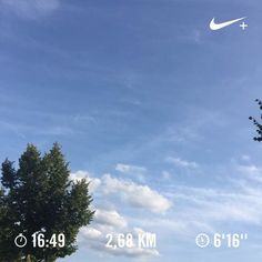 A little run after shooting practice. Pinky finger on the right hand is still healing.