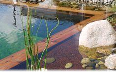 Bassin de jardin  Ooreka
