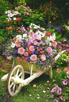 Using old wheelbarrows and other items that are not being used for their purpose make wonderful planters for your lawn