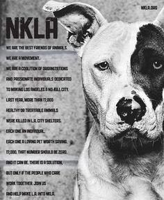 Best Friends Animal Society NKLA program! Help make L.A. a 'no-kill' city!