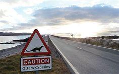 Causeway to Berneray, Outer Hebrides Scotland Road Trip, Scotland Travel, Places To Visit Uk, Places To Go, Summer Travel, Holiday Travel, Scotland Castles, Outer Hebrides, Scottish Islands
