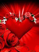 rose rouge Image, GIF animé