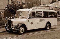 ▐ Saurer bus •1♥•