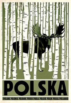 POLAND Birchwood and Elk, Polish Tourist Poster - Ryszard Kaja