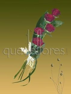 Ramo alargado de 5 rosas rojas. Descubre en este post nuestras propuestas de ramos de novia para vestidos de las colecciones 2013 #ramosdenovia #bodas