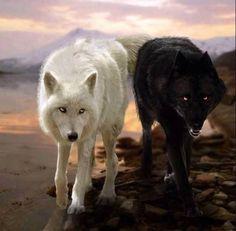 Mystical Wolves