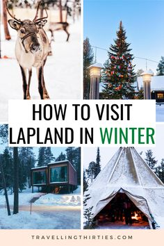 If you are looking for an ultimate winter wonderland, look no further than the Finnish Lapland. From Northern Lights Tours, Reindeer sleigh rides and Santa Claus' Village. Lapland really has you covered a once in a lifetime experience. Click for more tips on staying in an Igloo and an Arctic Tree House. | Lapland Finland Photography | Lapland Finland Christmas | Lapland Finland Christmas | Lapland Finland Igloo | Lapland Finland Winter | Lapland Finland Travel | Lapland Finland Outfit | Finnish Finland Travel, Norway Travel, Travel Around Europe, Travel Around The World, Santa Claus Village, Northern Lights Tours, Sleigh Rides, Lapland Finland, Travel Tips