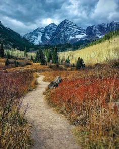 Conifer Forest trail farmland hills mountains Maroon Bells Aspen Colorado by Abel Rojas Bryce Canyon, Grand Canyon, Beautiful World, Beautiful Places, Aspen Colorado, Colorado Trip, Forest Trail, Scenery Pictures, Camping