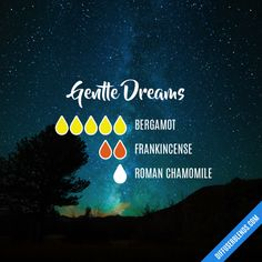Gentle Dreams - Essential Oil Diffuser Blend